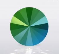 Swarovski Rivoli Crystal Scarabaeus Green, размер 14мм (1122)