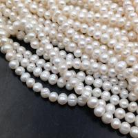 Цепь из Латуни -  Крупная кольцо 14мм и сложный элемент 12.7*8.4; цвет золото
