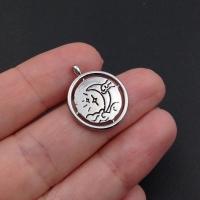Медальон круглый 2-х сторонний Лунная ночь; цвет платина